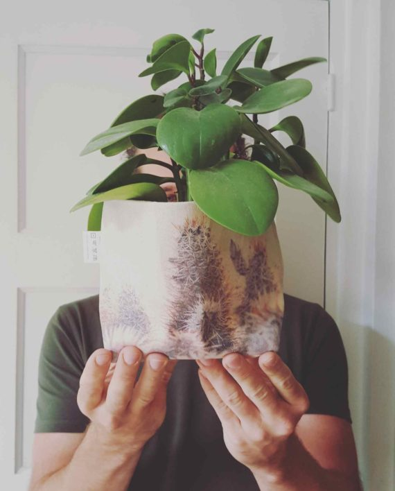 Op FairFrog: Canvas Mand Cactus Xl