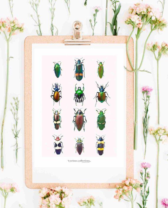Duurzame kaart insecten duurzame ansichtkaarten
