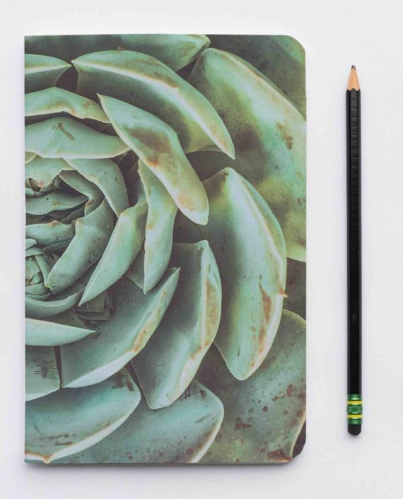 recycle schrift succulent