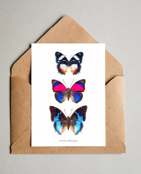 Ansichtkaart Drie Blauwe Vlinders