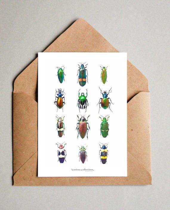 duurzame kaart insecten