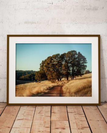 Gallery Print Summer Ranch Voorzijde