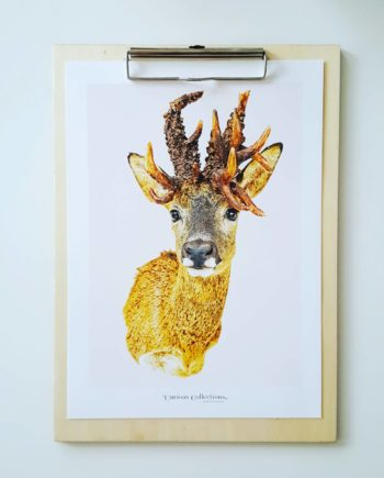 Houten klembord my deer