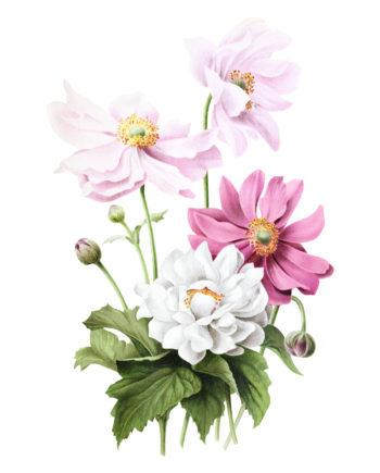 Duurzame kaarten bloemen