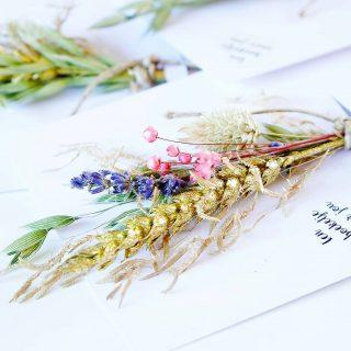 Kleine droogbloemen boeketjes op een kaart 💛 Ieder seizoen verzinnen we weer een nieuw droogbloemen boeketje voor op onze eco kaarten. Inmiddels 7 boeketjes verder.. hebben we er nu voor het eerst eentje met glitters! Bekijk ze online via de shop of via @orderchampbv (voor retailers) . . . . . . #mookstories#droogbloemenboeket#flowercard#driedflowers#droogbloemen#droogbloemenboeketjes #handmadewithlove#interieurinspiratie#interiorwarrior#affordableart#handmade#fasionaddict#ecoblogger#interior1234#kleurrijkwonen#ethical#plantbased#vtwonen#greenliving#binnenkijken#witwonen#weddingblog#weddinggift#mamablog#ecowebshop#naturelovers#bloemenmeisje#retailnederland#lieverdanlief#huwelijkscadeau